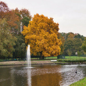 Woon- en leefomgevine, groen en water - Leefbaar Almelo